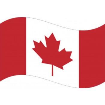 Drapeau Canadien 2