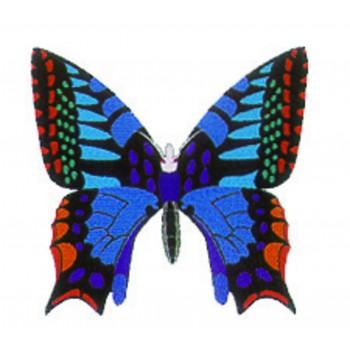 Papillon - bleu