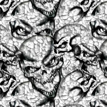 Crânes fêlés