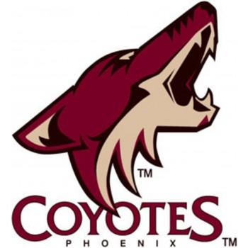 coyotes de phoenix