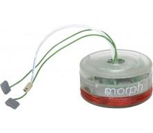 Morph+MC